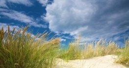 Klima Nordsee / Beste Reisezeit Nordsee